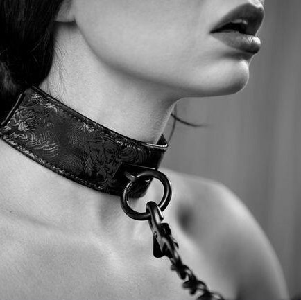 Collars | Leashes